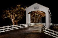 Covered Bridge w-Tree