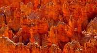 Bryce Canyon Orange Backlit Hoodoos.