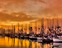Harbor Golden Sunrise