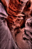Wild Horse Slot Canyon Footsteps