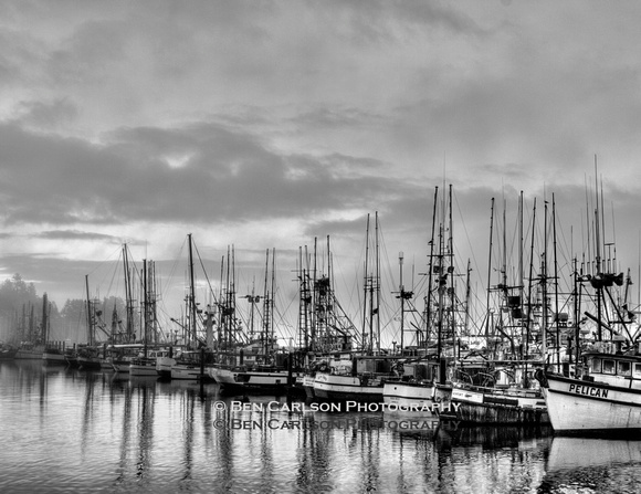 Harbor Golden Sunrise - Black/White